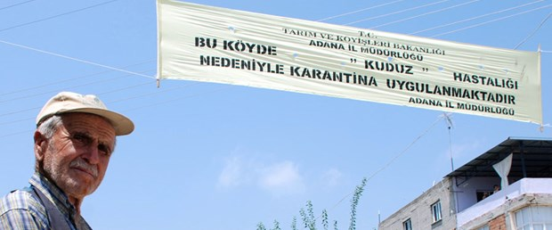Adana'da kuduz paniği