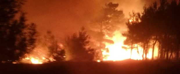 adıyaman orman yangını.jpg