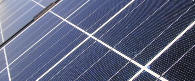 """Ağaçları """"güneş enerjisi"""" koruyacak"""