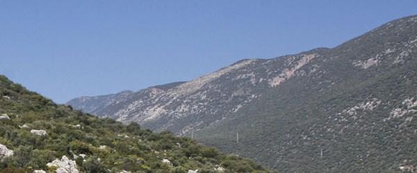 Antalya'da 2B başvuruları 10 bini aştı