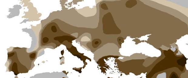 Avrupa'nın geni Anadolu'dan