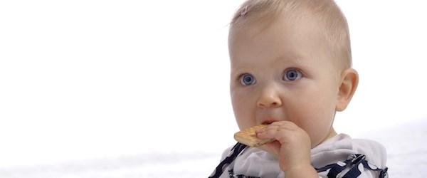 Ay ay bebek beslenmesi