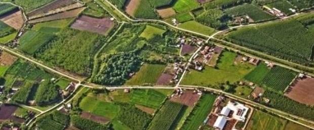 Aydın'daki hazine arazilerinde usulsüzlük iddiası