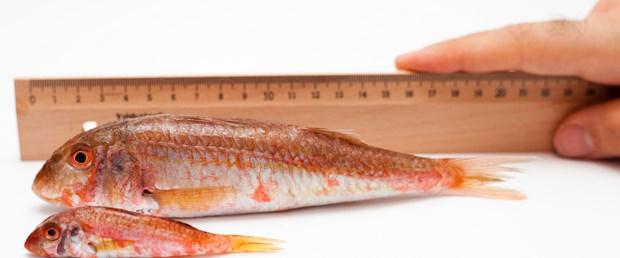 Balığını ölçtün mü?