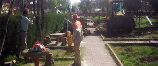 Belediye parktaki ağaçları kesti