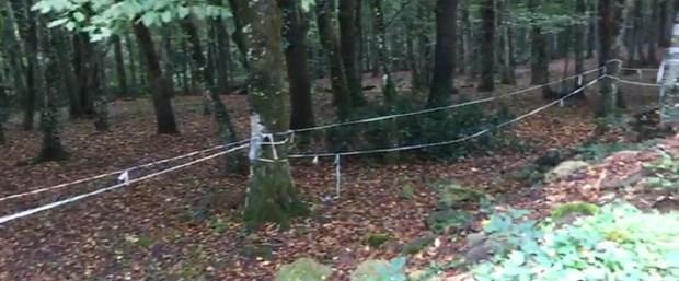 belgrad-ormanı-arama.jpg