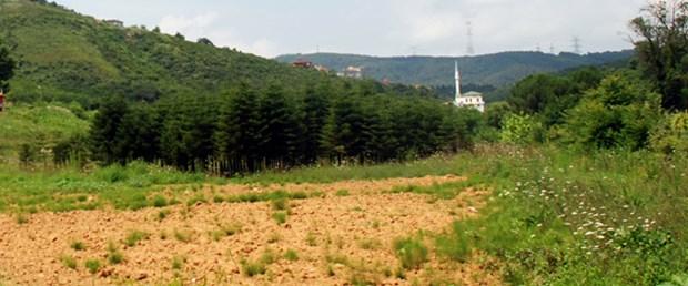 Beykoz, Ümraniye, Sultanbeyli'de 2B yoğunluğu