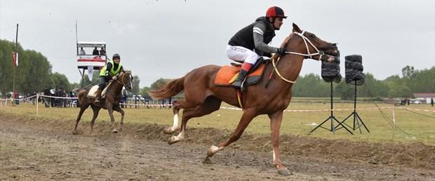 yarış atı.jpg