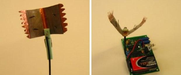 Böcek 'yiyerek' çalışan robot