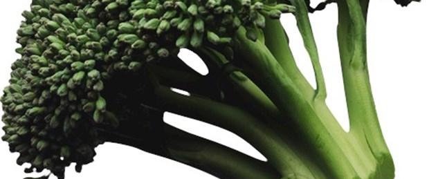 Brokoliye patent