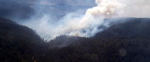 bursa orman yangını.jpg