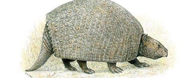 'Büyük hayvanlar ana besin kanallarıydı'