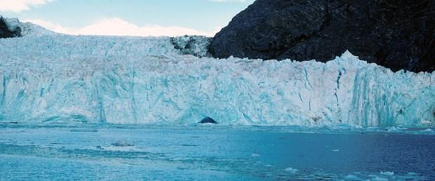 Buzulların maliyeti