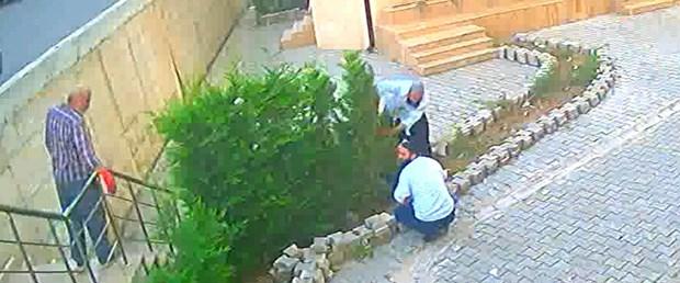sakarya ağaç hırsızlığı