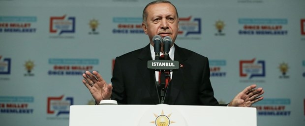 ak parti cumhurbaşkanı erdoğan241118.jpg