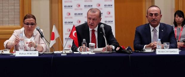 erdoğan japonya.jpg