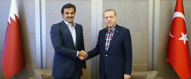 erdoğan al sani.jpg