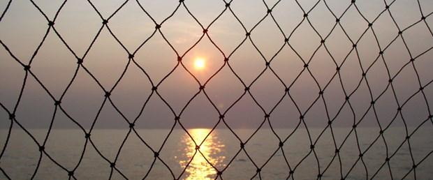 Deniz ağlara dolandı