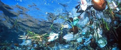 Deniz kirliliği Meclis'te