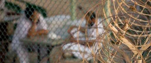 'Dikenli tellerin ardında Guantanamo'