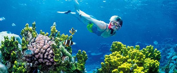 Dünyanın en büyük deniz rezervi