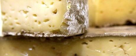 Dünyanın ilk peyniri bulundu