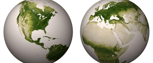 Dünya'nın 'yeşillik haritası'