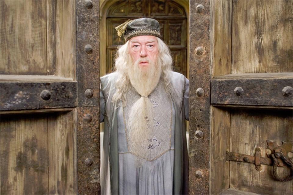 Harry Potter serisinin büyücüsü Dumbledore.
