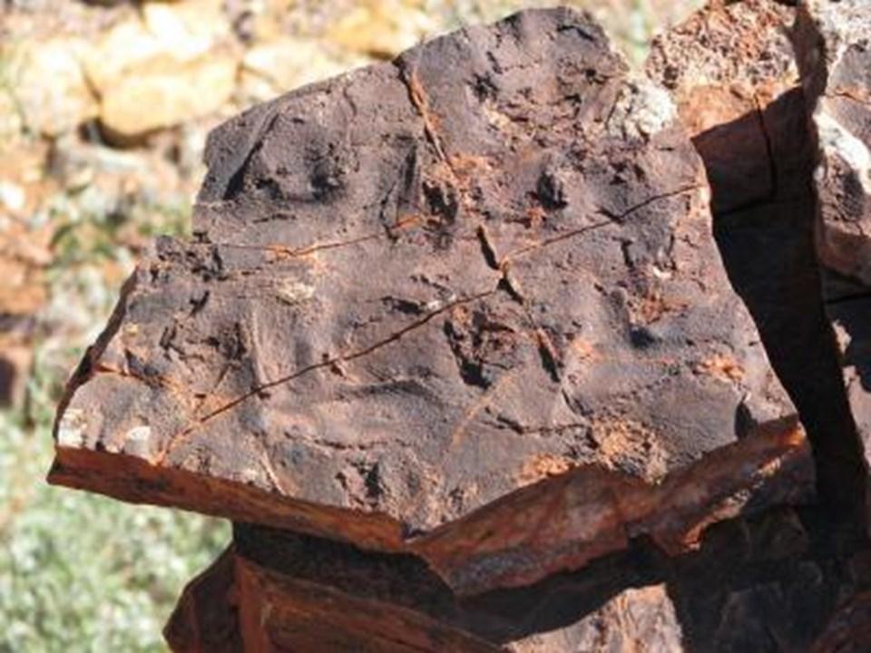 Ekibin incelediği kayalardan biri.