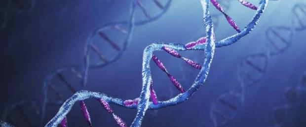 Genetik şifre 15 dakikada çözülecek