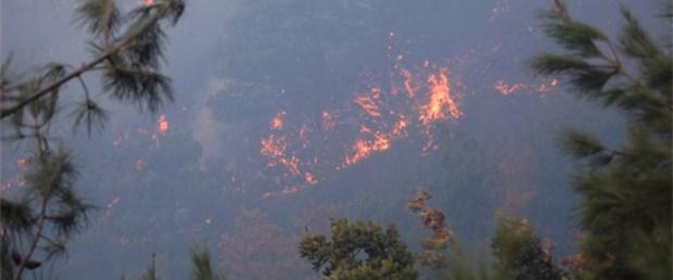 Hatay'da ormanlar yanıyor