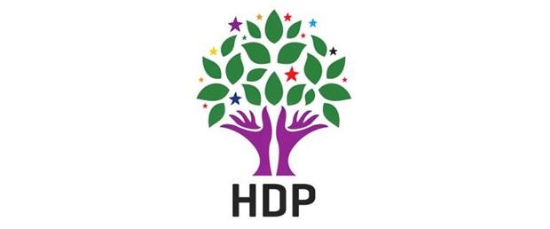 HDP LOGO 2.jpg