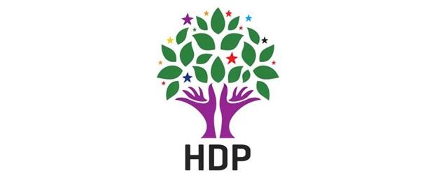 HDP LOGO 1.jpg