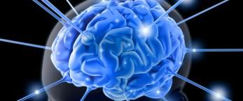 IBM, beyni kopyalamayı planlıyor