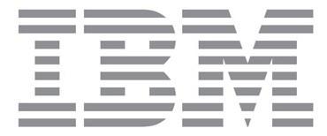 IBM'e Kayserili iş ortağı