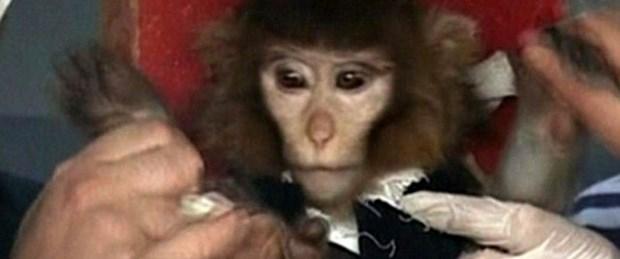 İran uzaya maymun göndermedi mi?