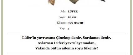 """İstanbul Lüfer'e hasret kalmasın!"""