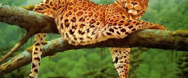 """İstanbul'da """"leopar"""" toplantısı"""