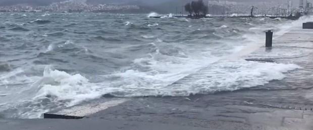 deniz-kara.jpg