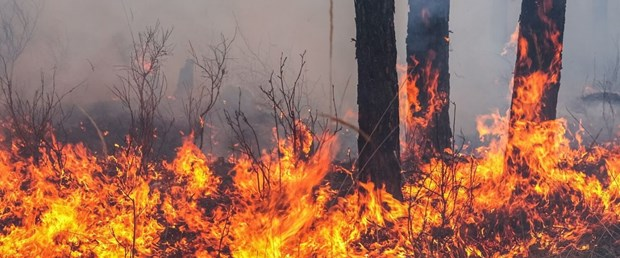 yangın arşiv (2).jpg