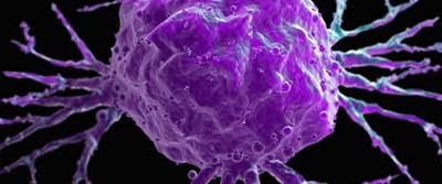 Kanserde genetik açılım
