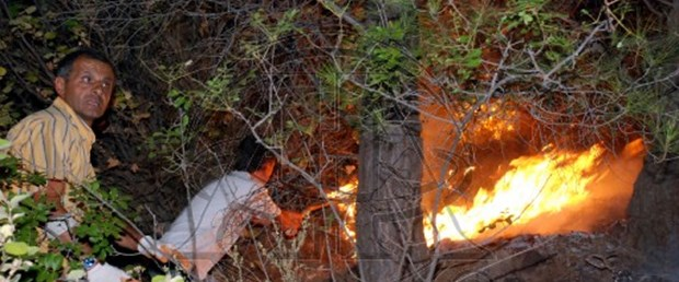Kaz Dağları'nda yangın kontrol altında