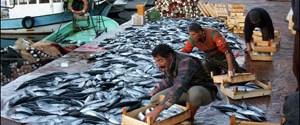 Kumkapı Balık Hali taşınıyor