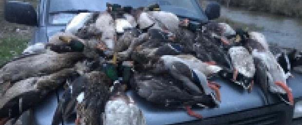ördek katliamı.jpg