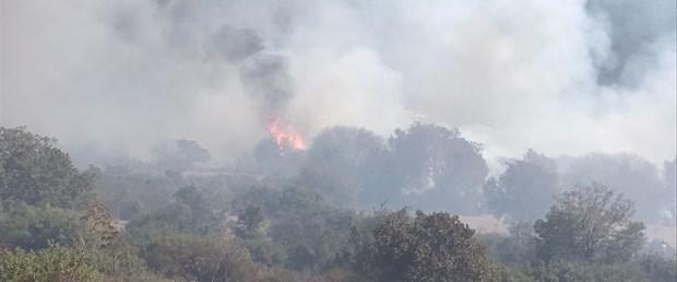 muğla yangın.jpg