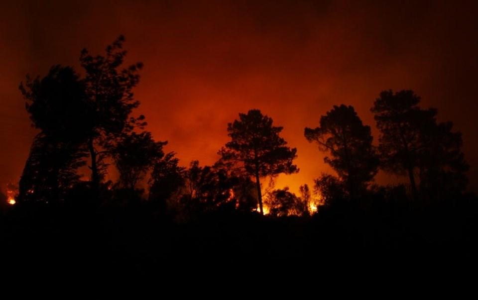 Muğla'da üç orman yangını