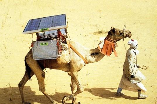 Güneş enerjisi elektriğin olmadığı bölgeler için de hayati önem taşıyor. Devenin üzerindeki panellerle çalışan küçük buzdolapları elektriksiz köylere ilaç taşıyor...