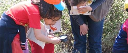 Okul bahçesilerinde doğayı öğrenecekler