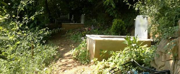çankırı kedi mezar.jpg
