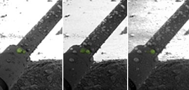 Bilim adamları, damlaların uzay aracının inişi sırasında roketlerden gelen sıcaklığın gezegenin yüzey katmanına sıkışmış buz tabakasını eritmesi sonucu oluştuğunu düşünüyor.